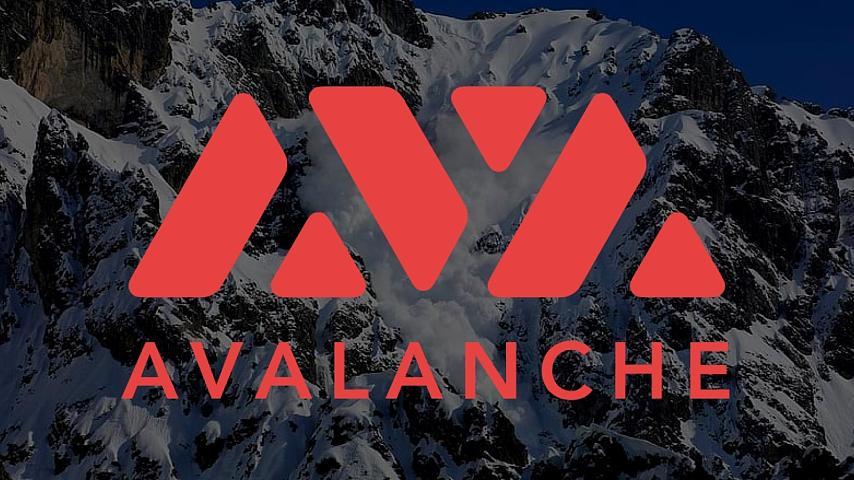 Avalanche完成2.3亿美元私募融资, Polychain和Three Arrows Capital领投