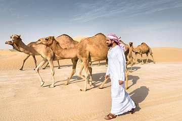 油价闪崩、股市暴跌,沙特意欲何为?