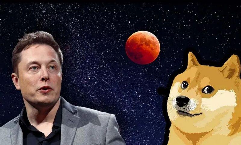 社区币代表DOGE:Meme正在影响投资逻辑