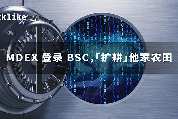 MDEX 登录 BSC,「扩耕」他家农田