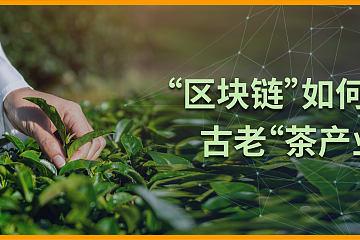 """""""古老""""茶产业碰上""""年轻""""区块链,能否擦出新火花?"""