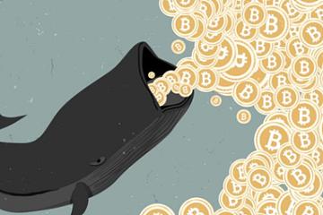 比特币BTC鲸鱼发出牛市周期即将来临的信号