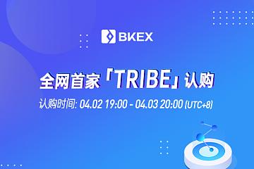 BKEX Global 将于4月2日7点开启Tribe 认购活动