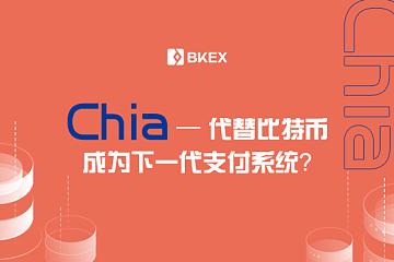 Chia:代替比特币成为下一代支付系统?