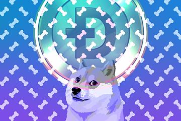 什么是狗狗币,狗狗币的时代已经到来
