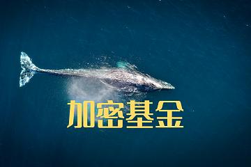 比特币巨鲸灰度及其背后的加密投资基金行业