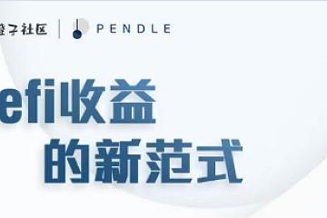 大橙子社区对话PENDLE CEO———Defi收益的新范式